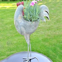 Adobe Cockerel Planter Reflecting