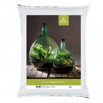 Fallen Fruits Terrarium Soil - 5L