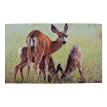Fallen Fruits - Deer Printed Doormat (Rubber)