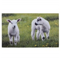 Fallen Fruits (RB145) Lamb Printed Doormat - Rubber