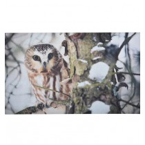Fallen Fruits (RB151) Owl Printed Doormat - Rubber