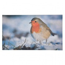 Fallen Fruits (RB152) Robin Printed Doormat - Rubber