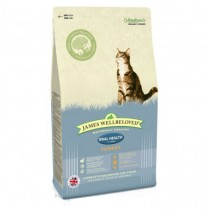 James Wellbeloved (Cat) Oral Health - Turkey - 300g