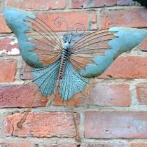 Adobe Wall Butterfly